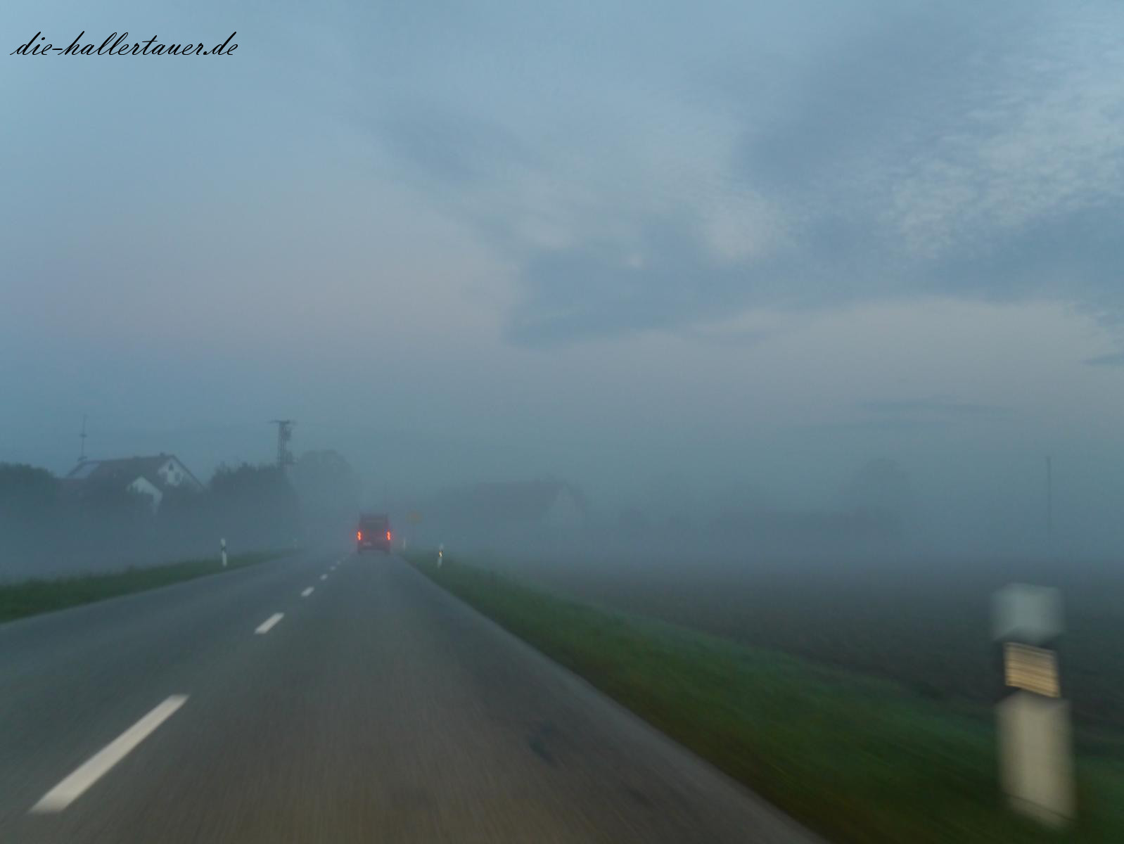 Nebel in der Hallertau