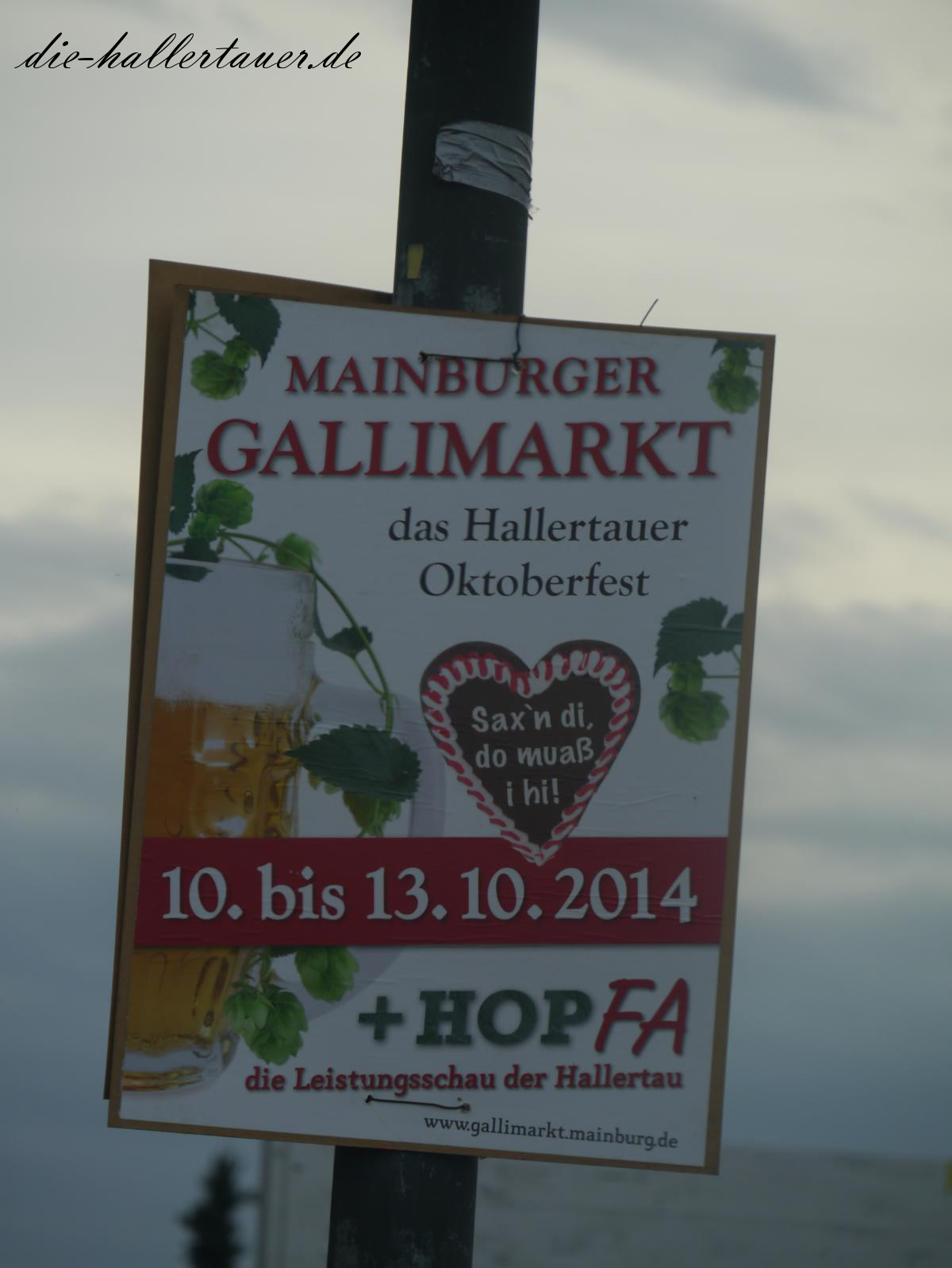 Mainburger Gallimarkt