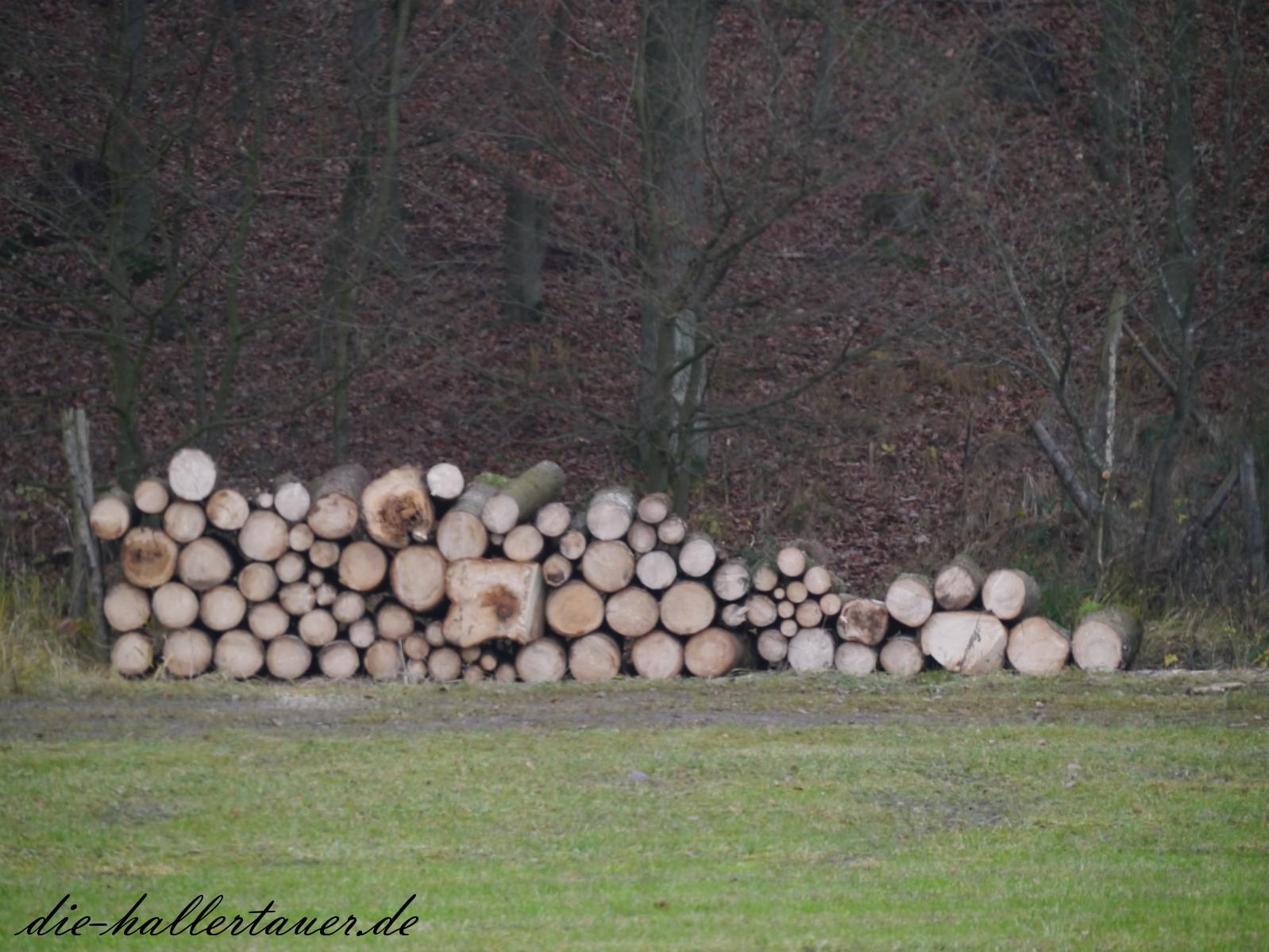 Holz vor da Hüttn