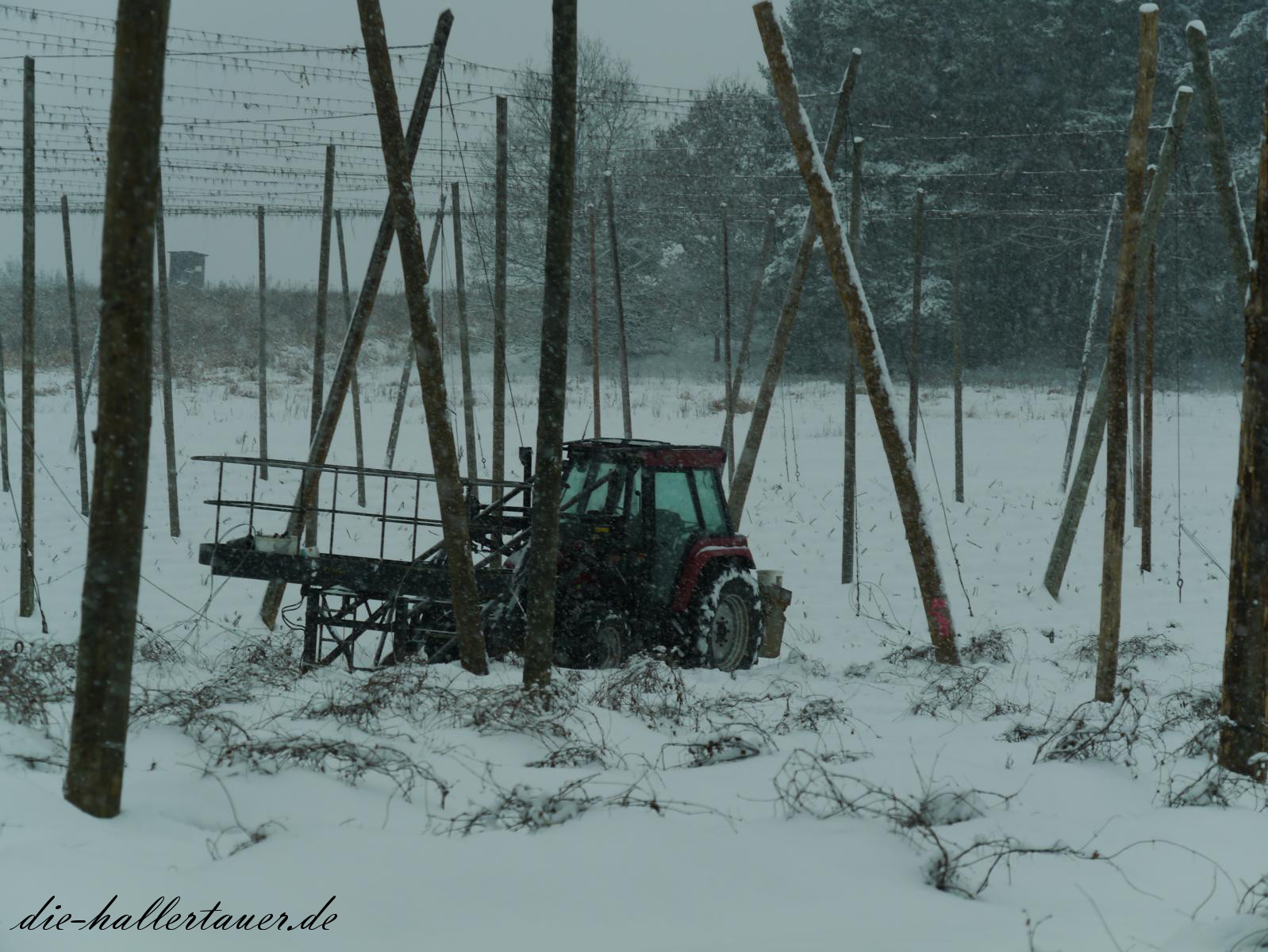 Winter Hopfenbauern