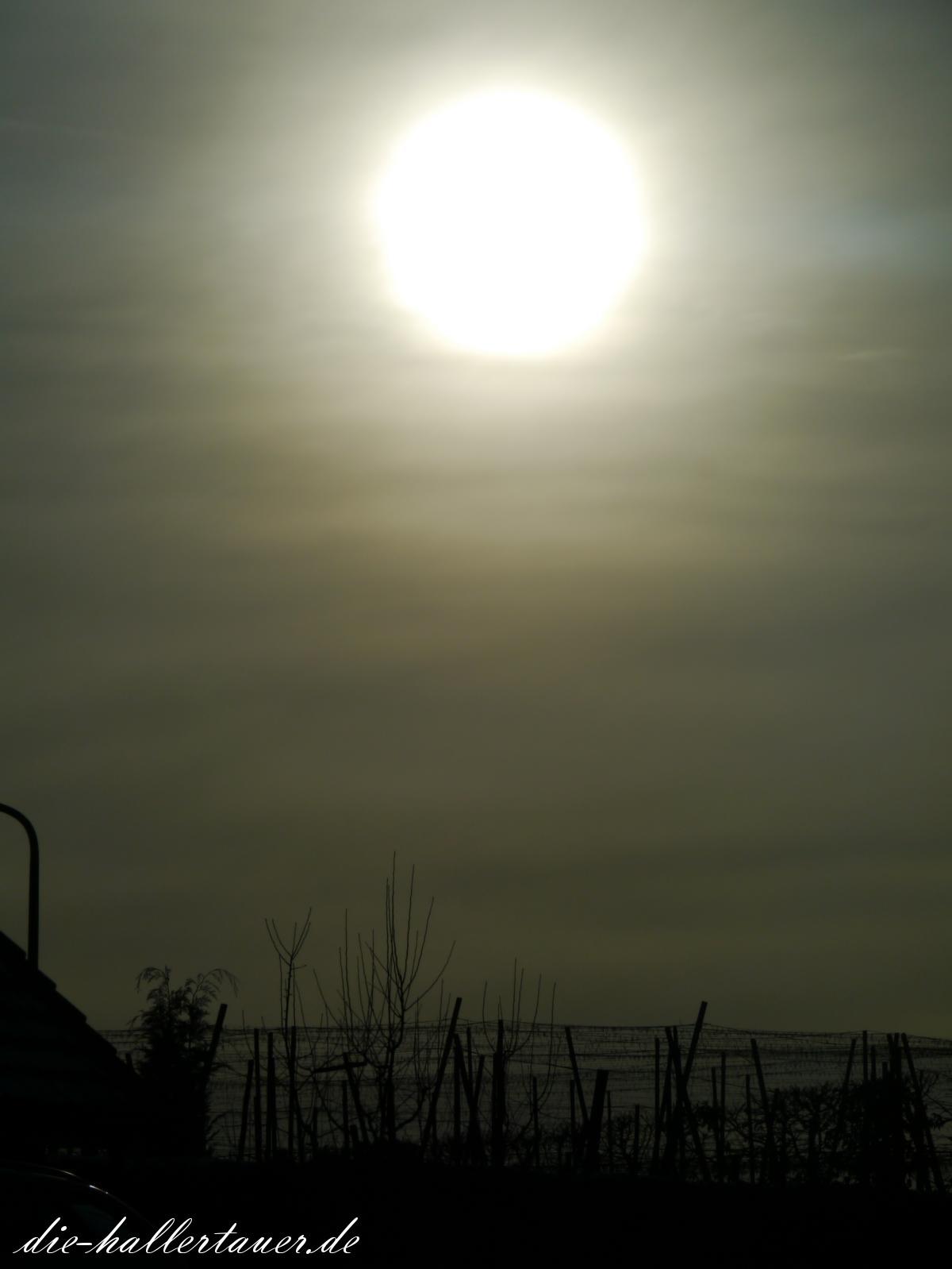 Trübe Sonne