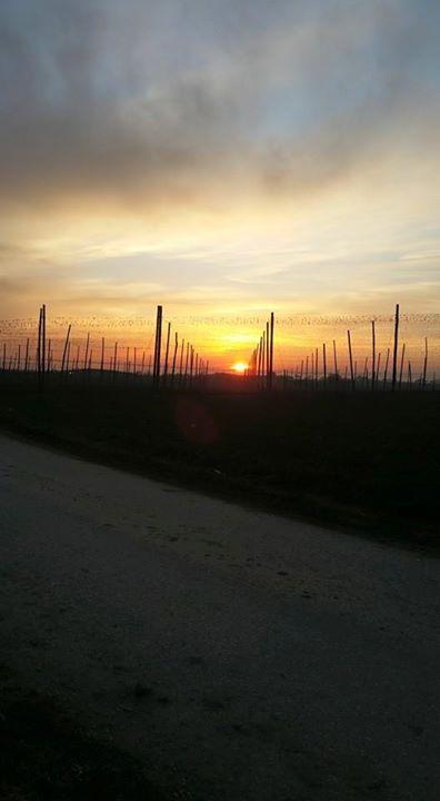 Sonnenuntergang in Oberhaindlfing