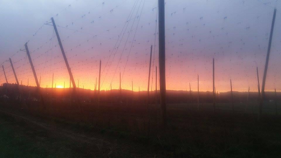 Sonnenaufgang bei Tegernbach