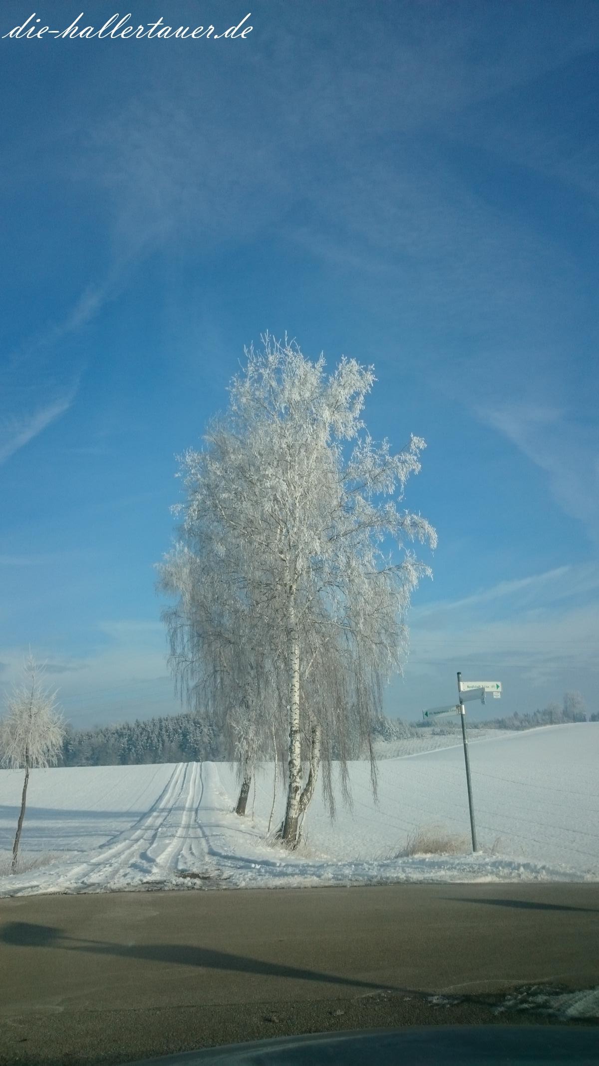 Bye Bye Schnee