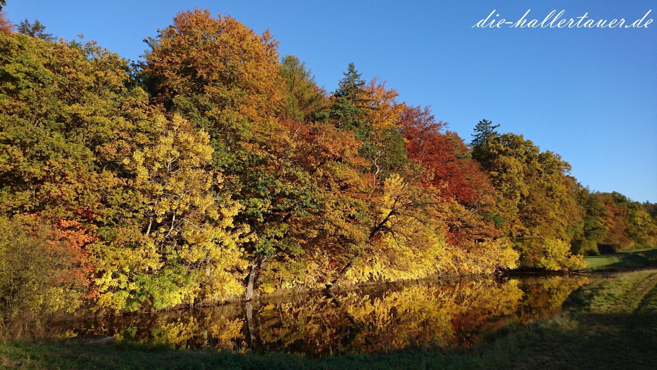 Herbstspiegelbild