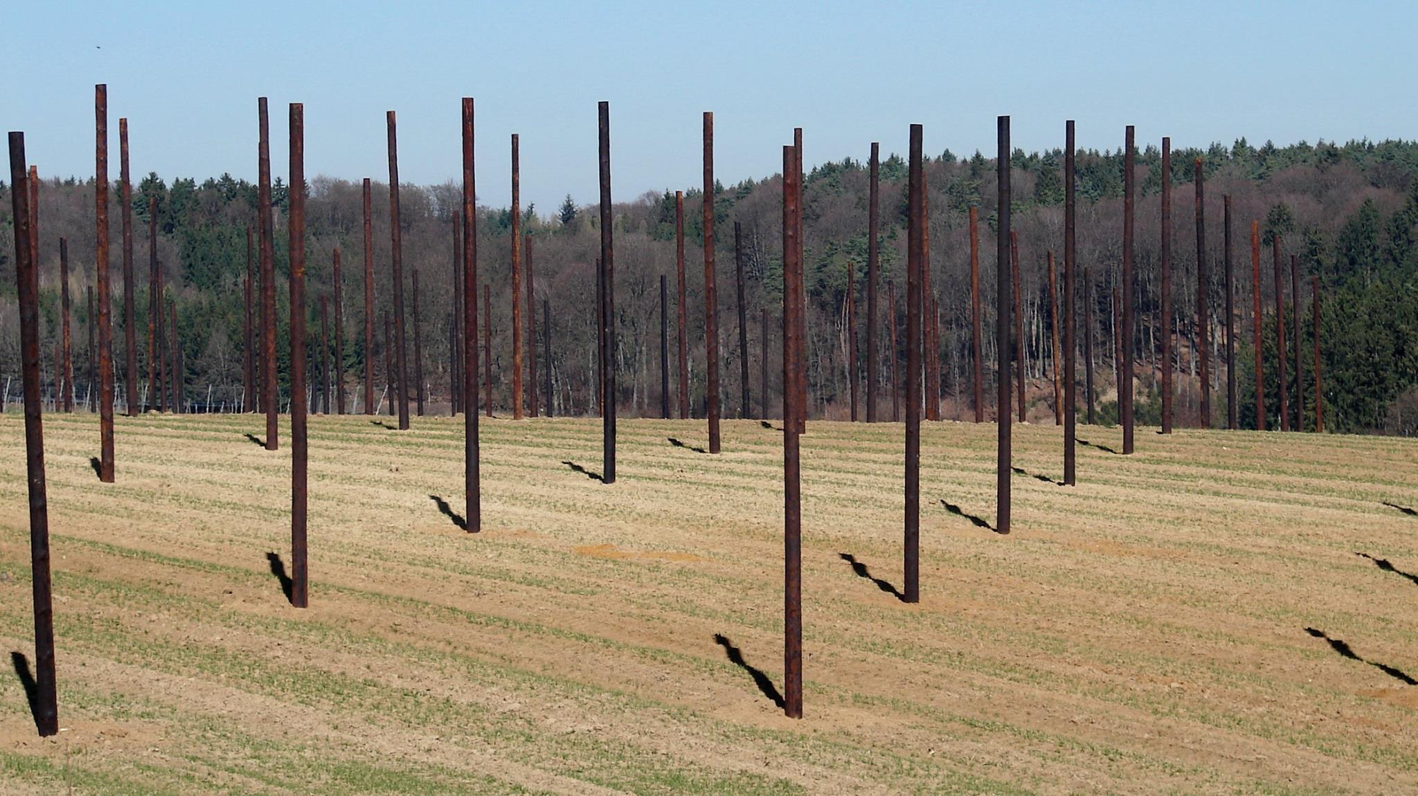 Einsame Säulen